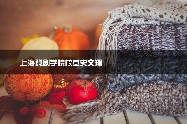 上海戏剧学院校草史文翔